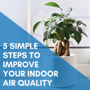 5 Simple Steps To Improve Your Indoor Air Quality