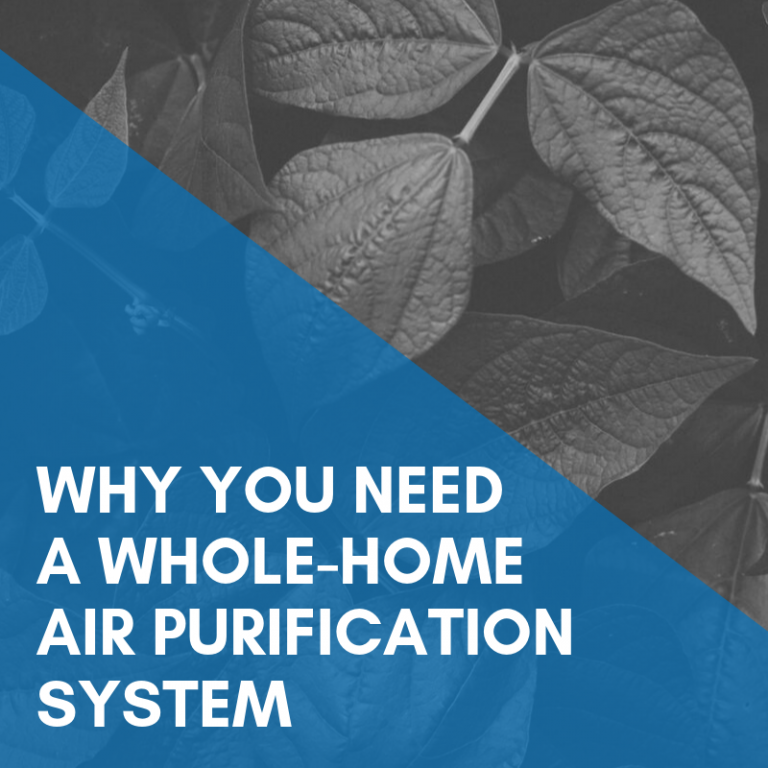 Should You Turn Your HVAC into a Whole-Home Air Purification System?