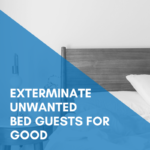 Unwanted Guests: Exterminating Bed Bugs For Good