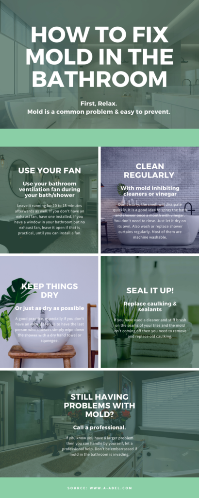 infographic explaining how to fix mold in the bathroom using your bathroom fan and mold removal cleaners
