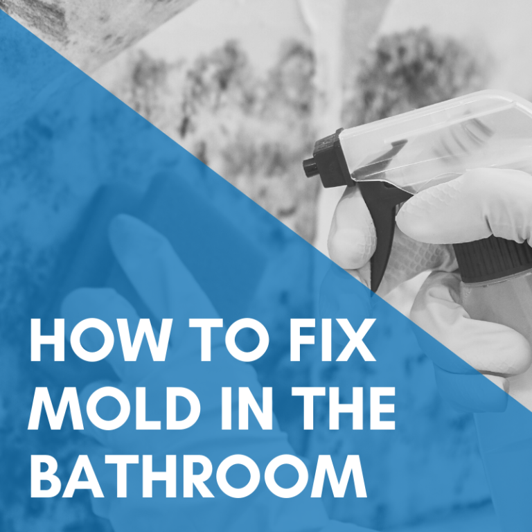 How To Fix Mold In The Bathroom