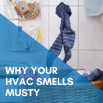 Why Your HVAC Smells Musty