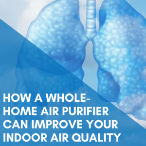 How a Whole-Home Air Purifier can Improve Your Indoor Air Quality